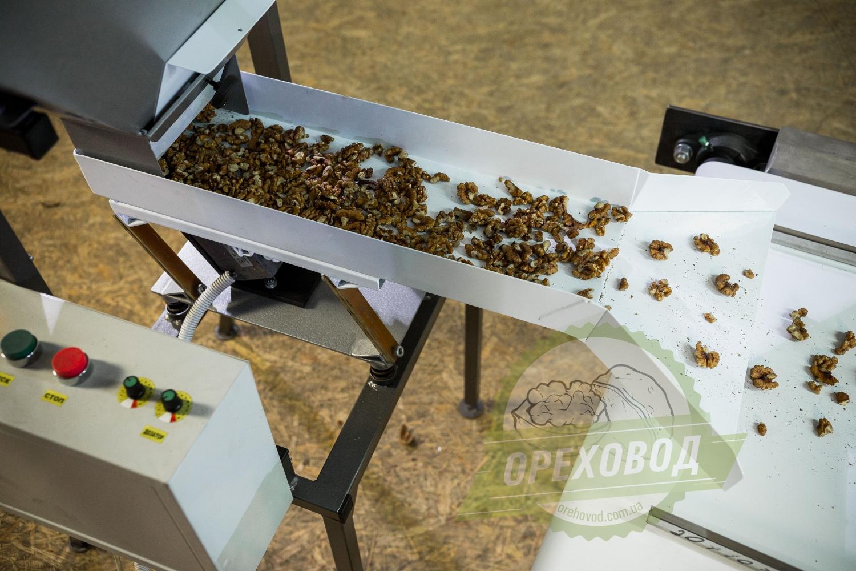 Инспекционный стол для сортировки грецкого ореха - 4