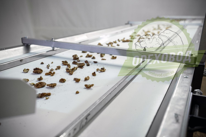 Инспекционный стол для сортировки грецкого ореха - 3