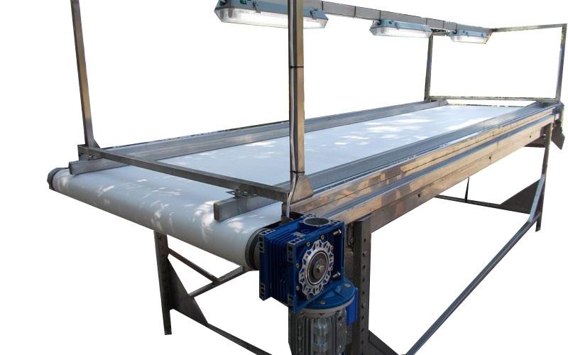 Инспекционный стол для сортировки грецкого ореха - 7