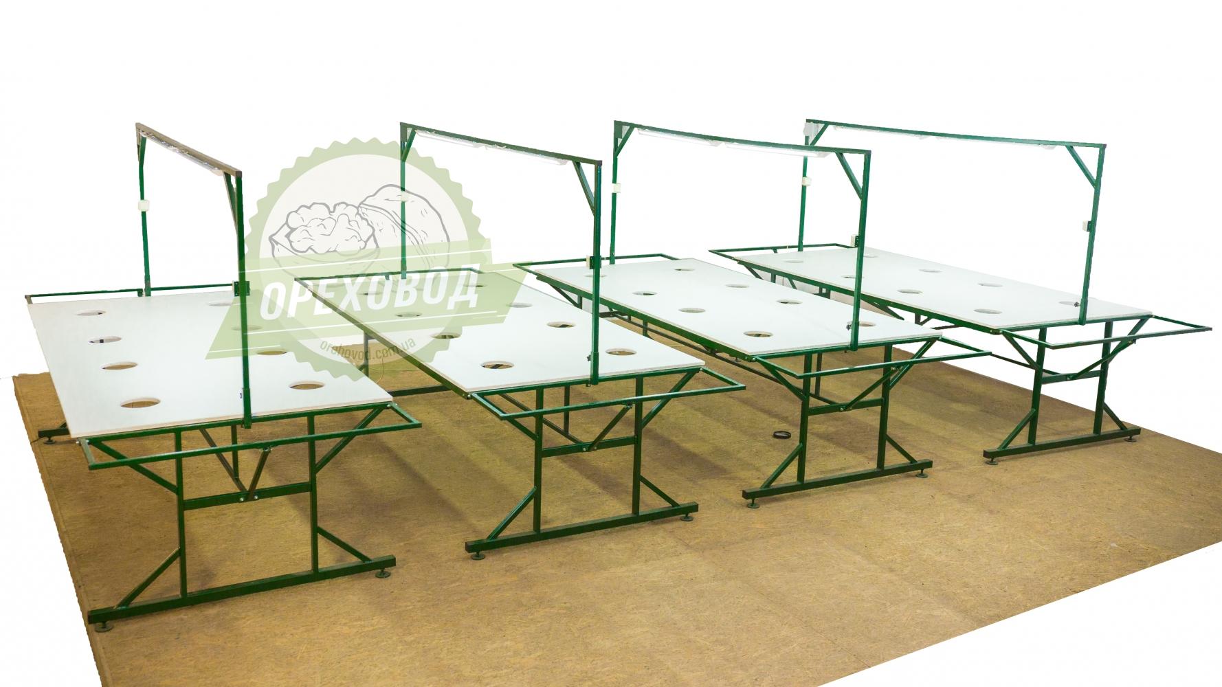 Стол для переборки грецкого ореха - 2