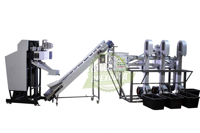 Большая промышленная линия по переработке грецкого ореха - 1