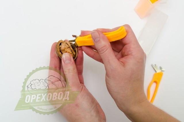 Базовая линия по переработке грецкого ореха - 12