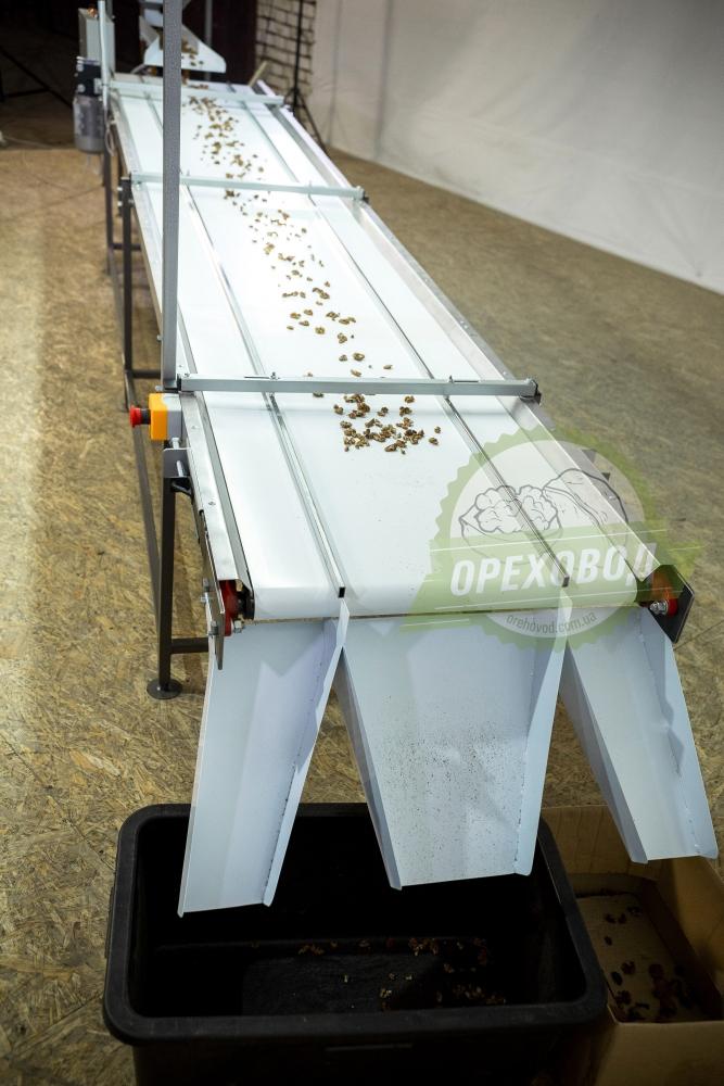 Инспекционный стол для сортировки грецкого ореха - 5