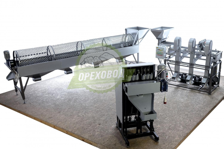 Большая промышленная линия по переработке грецкого ореха - 6