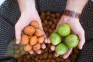 Очиститель грецкого ореха от зеленой кожуры (200 кг/ч) - 4